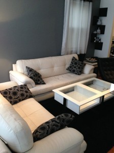 Leather-Sofas-Cleaning-Santa-Rosa