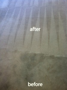 Santa-Rosa-Carpet-Cleaning-Carpet-Cleaning