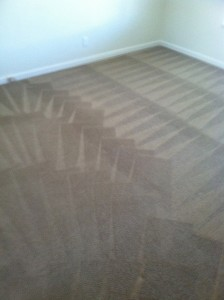 Santa-Rosa-Carpet-Cleaning-Wall-To-Wall