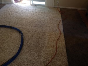 Santa-Rosa-Traffic-Area-carpet-cleaners